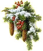 vianočné šišky 2